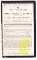 DP Maria Th. Synaeve ° Woesten Vleteren 1837 † Poperinge 1914 X A. VanNeste Xx H. Godijn - Devotion Images