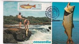 CONCORDIA. SALTO GRANDE, PESCA DEL DORADO (SALMINUS MAXILLOSUS VALENCENALES). OBLITERE 1973 L'ARGENTINE - BLEUP - Argentine