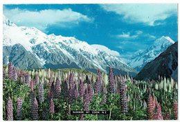 (033..317) Neuseeland - Neuseeland