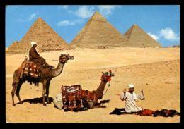 C423 GIZA - PRAYER NEAR PYRAMIDS - UAR UNITED ARAB REPUBLIC - Gizeh