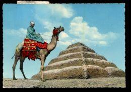 C426 SAKKARA - KING ZOSER'S STEP PYRAMID - STAMP OF UAR UNITED ARAB REPUBLIC - Piramidi