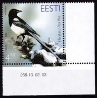 2003, EESTI, 456, Vogel Des Jahres: Elster. MNH **, - Estonie