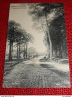 OOSTACKER-LOURDES  - Gentsesteenweg  -  Chaussée De Gand - Gent