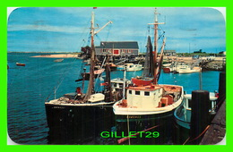 BATEAUX, SHIP - FISHING BOATS IN HARBOR, CAPE COD, MA - TRAVEL IN 1956 - E. D. WEST CO - - Pêche
