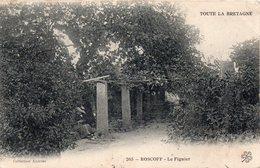 CPA Roscoff Le Figuier - Roscoff