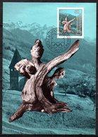 LIE-01 : Liechtenstein CM Légende Famille épargnée 1984 - Cartes-Maximum (CM)