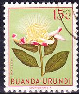 Ruanda-Urundi - Zuckerbusch (Protea L.) (Mi.Nr.: 134) 1953 - Gest Used Obl - Ruanda-Urundi