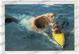 Scout Scouts Agesci - Squalo Shark - Canoa - Scoutismo