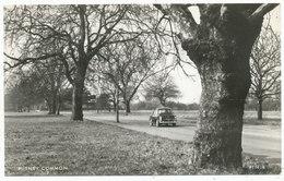 Putney Common - Surrey