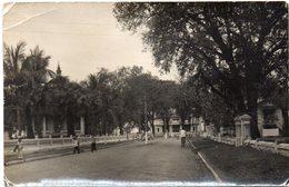 CPSM (carte Photo) Vientiane ? Rue Avec Des Enfants Et Un Cycliste (arbres Palmiers) - Laos