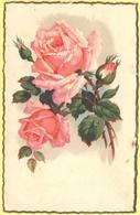 Tematica - Fiori - Rose - Mazzo Di Rose - Wrote But Not Sent - Roses