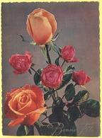 Tematica - Fiori - Rose - Mazzo Di Rose - Bonne Fête - 1962 - Wrote But Not Sent - Roses