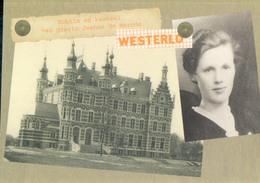 Westerlo Kokkin En Kasteel Van Gravin Jeanne De Merode - Westerlo