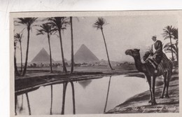 CAIRO. THE PYRAMIDS OF GIZEH. EGYPTIAN MAN UPON A CAMEL. LEHNERL & LANDROCK. CIRCA 1950s - BLEUP - Pyramids