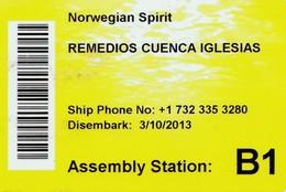 UNITED STATES, CRUISER CABIN KEY CARD. NORWEGIAN SPIRIT. YEAR 2013. (023). - Hotel Keycards