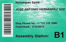 UNITED STATES, CRUISER CABIN KEY CARD. NORWEGIAN SPIRIT. YEAR 2013. (024). - Hotel Keycards
