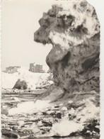 De Panne , L'hiver à La Panne  ; 1962-1963 - De Panne
