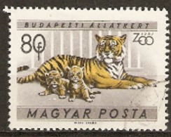 Hungary  1961  SG 1720  Budapest Zoo  Tiger And Cubs   Fine Used - Hongrie