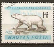 Hungary  1961  SG 1722  Budapest Zoo Polar Bear Fine Used - Hongrie