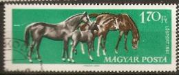 Hungary 1961 SG 1762  Racehorses  Fine Used - Horses