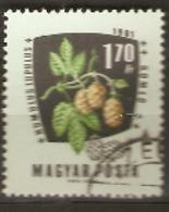 Hungary  1961 SG 1778  Medicinal Plants Hops   Fine Used - Plantes Médicinales