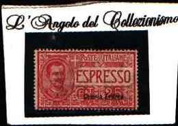90177) ERITREA-Espressi Tipo Floreale -  1907-25 C. Effigie Di Vittorio Emanuele III E Ornamenti Floreali-MLH* - Erythrée