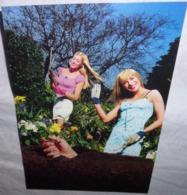 Carte Postale - Vodka Source (2 Femmes Dans Un Jardin) (boisson - Alcool) - Advertising