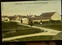 TREILLES COLORISEE                      JLM - France