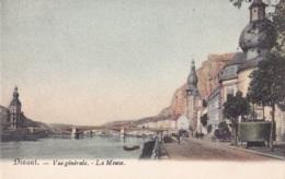 Dinant Vué Générale La Meuse - Dinant