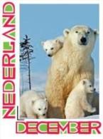 Nederland  2014   IJSBEREN       Postfris/mnh/sans Charniere - Nederland