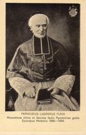 Franciscus Ludovicus Fleck - Heiligen
