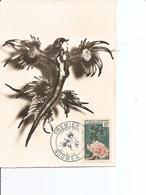 Nouvelle -Calédonie - Limace De Mer ( CM De 1959 à Voir) - Cartes-maximum