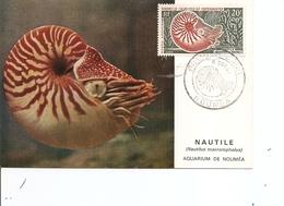 Nouvelle -Calédonie - Nautile ( CM De 1962 à Voir) - Cartes-maximum