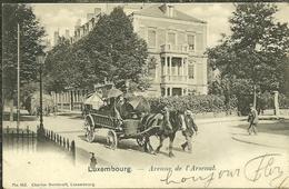 LUXEMBOURG Avenue De L Arsenal Attelage De Cheveaux Animée 25 / 8 / 1903 2 Scans - Luxembourg - Ville