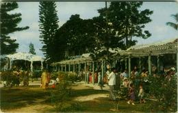 SINGAPORE - HAW PAR VILLA - EDIT MALAYAN COLOR VIEWS - 1950s (BG2058) - Singapore