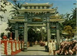 SINGAPORE - TIGER BALM GARDEN - ADVERTISING CARD MICOFLAVINA - ITALIAN EDITION 1967 (BG2059) - Singapour