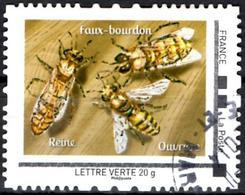 FRANCE Montimbramoi - Insects Insecten Insectes Bee Bees Abeille Abeilles Biene Bienen Abeja Abejas Ape Api Honingbij - Abeilles
