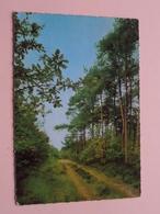 HENGELHOEF Houthalen ( Kruger ) Anno 1967 ( Zie/voir Photo ) ! - Houthalen-Helchteren