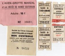 Lot De 6 Tickets D'entrée - AVEN  ARMAND -  AVEN  D' ORGNAC - AVEN - GROTTE  MARZAL + Plan De Montpellier Le Vieux - Eintrittskarten