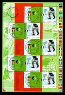 YV BF 49 - Coupe Du Monde De Football 2002 - Prix = Faciale - Blocs & Feuillets
