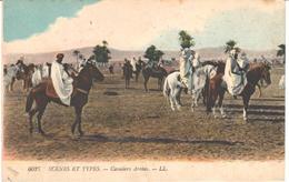 POSTAL     CAVALIERS ARABES  -COLEC.SCENES ET TYPES  - - Postales
