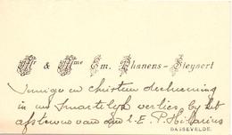 Visitekaartje - Carte Visite - Mr & Mme Em. Dhanens - Steyaert - Bassevelde - Visiting Cards