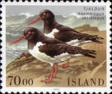 USED  STAMPS Iceland - Birds  - 1987 - Oblitérés