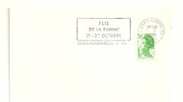 LOIRET - Dépt N° 45 = CHATEAURENARD 1989 = FLAMME Thème FRUIT = SECAP  'FETE DE LA POMME 21 - 22 OCTOBRE ' - Marcophilie (Lettres)
