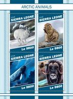 Sierra Leone. 2018 Arctic Animals. (1109a) - Poissons