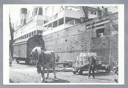 BE.- Vervoer Van Vaatjes Door Natiewagen Met Paard Rond 1937. Van Stadsarchief Stad Antwerpen. - Postkaarten