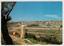 GERUSALEMME    VISTA  PANORAMICA   DAL  MONTE  DEGLI  ULIVI                (VIAGGIATA) - Israel