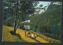 Loen , Nordjord    CARTE POSTALE FORMAT MODERNE  - Lwj15 - Norvège