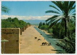 MARRAKECH   LES  REMPARTS  ET  LE  GRAND  ATLAS                       (NUOVA) - Marrakech
