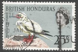 British Honduras. 1962 Birds. QEII. 25c Used SG 209 - British Honduras (...-1970)